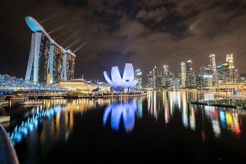The lotus of Singapore
