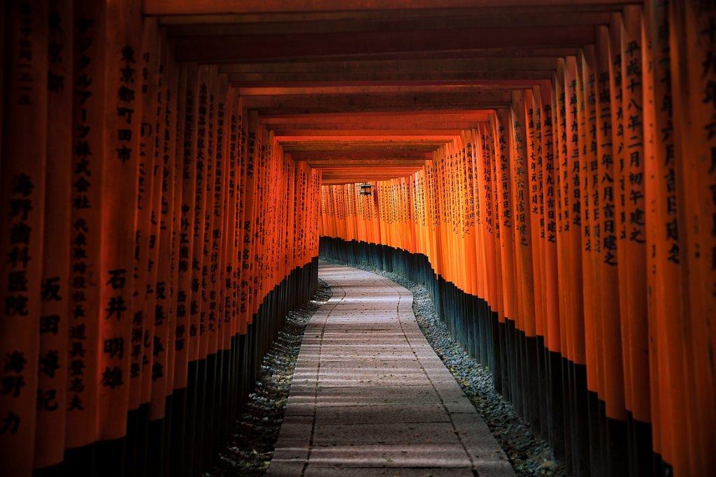 Torii of Fushimi Inari Taisha